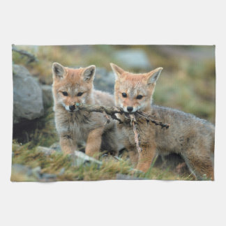 South America, Chile, Torres del Paine National Tea Towel