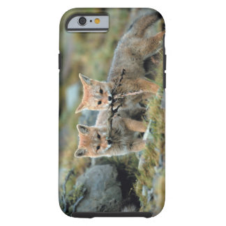 South America, Chile, Torres del Paine National Tough iPhone 6 Case