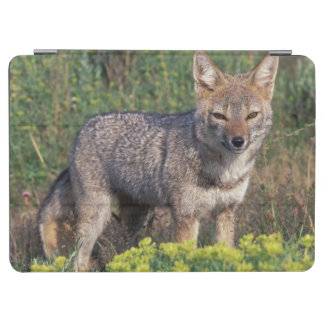 South America, Chile, Torres del Paine NP, iPad Air Cover