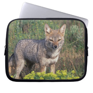 South America, Chile, Torres del Paine NP, Laptop Sleeve