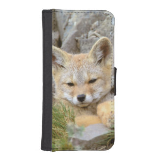 South America, Chile, Torres del Paine iPhone 5 Wallet Case