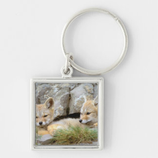 South America, Chile, Torres del Paine Silver-Colored Square Key Ring