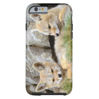 South America, Chile, Torres del Paine Tough iPhone 6 Case