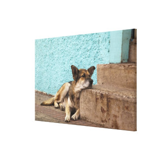 South America, Chile, Valparaiso. German Canvas Print