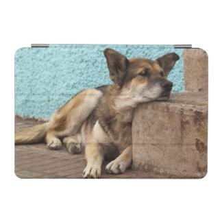 South America, Chile, Valparaiso. German iPad Mini Cover