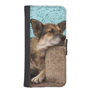 South America, Chile, Valparaiso. German iPhone 5 Wallet Case