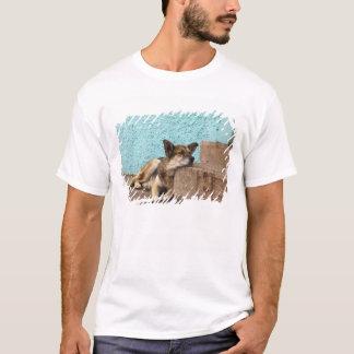 South America, Chile, Valparaiso. German T-Shirt