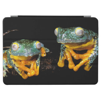 South America, Ecuador, Amazon. Leaf frogs iPad Air Cover