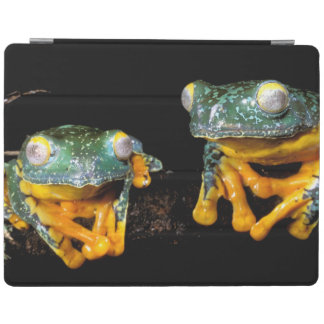 South America, Ecuador, Amazon. Leaf frogs iPad Cover
