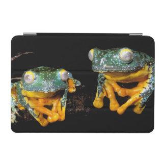 South America, Ecuador, Amazon. Leaf frogs iPad Mini Cover