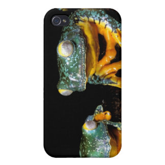 South America, Ecuador, Amazon. Leaf frogs iPhone 4/4S Covers