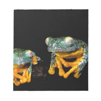 South America, Ecuador, Amazon. Leaf frogs Notepad