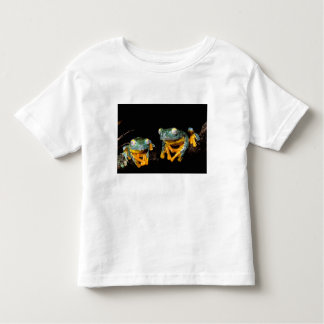 South America, Ecuador, Amazon. Leaf frogs Toddler T-Shirt