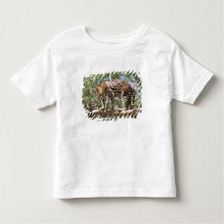 South America, Ecuador, Amazon. Ocelot Toddler T-Shirt