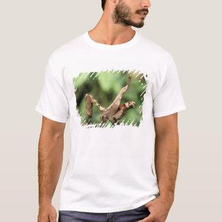 South America, Ecuador, Amazon. Praying Mantis T-Shirt