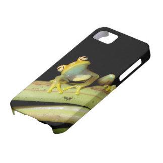 South America Ecuador Amazon Tree frog Hyla iPhone 5 Covers