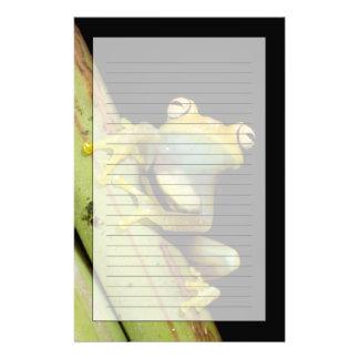 South America, Ecuador, Amazon. Tree frog (Hyla Customised Stationery