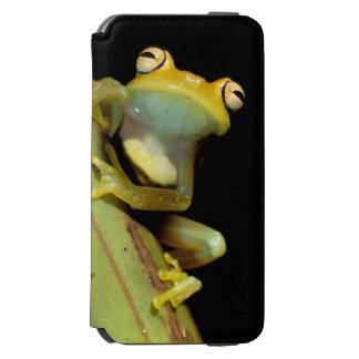 South America, Ecuador, Amazon. Tree frog (Hyla Incipio Watson™ iPhone 6 Wallet Case
