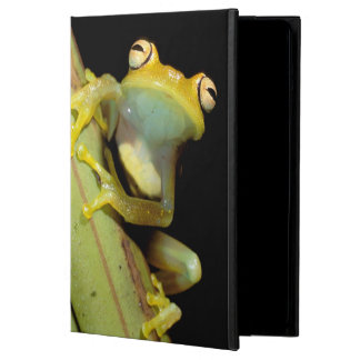 South America, Ecuador, Amazon. Tree frog (Hyla iPad Air Cover