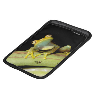 South America, Ecuador, Amazon. Tree frog (Hyla iPad Mini Sleeve