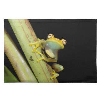 South America, Ecuador, Amazon. Tree frog (Hyla Placemat