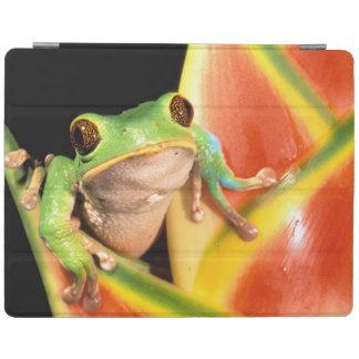 South America, Ecuador, Amazon. Tree frog iPad Cover