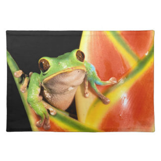 South America, Ecuador, Amazon. Tree frog Placemat