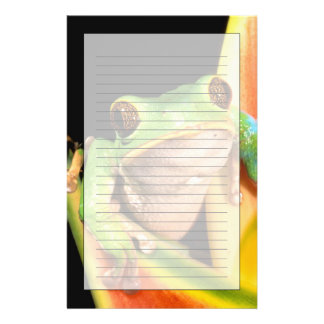 South America, Ecuador, Amazon. Tree frog Stationery