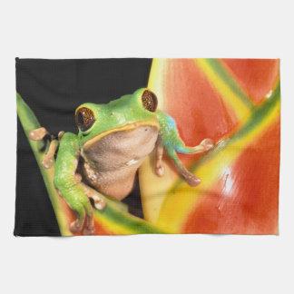 South America, Ecuador, Amazon. Tree frog Tea Towel