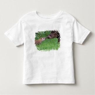 South America, Ecuador, Black waters area. Toddler T-Shirt