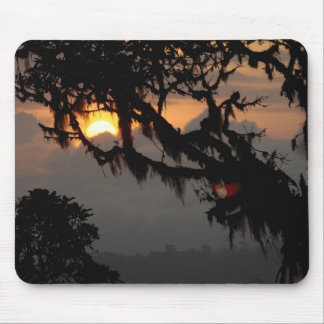 South America, Ecuador, cloud forest scene in Mouse Pad