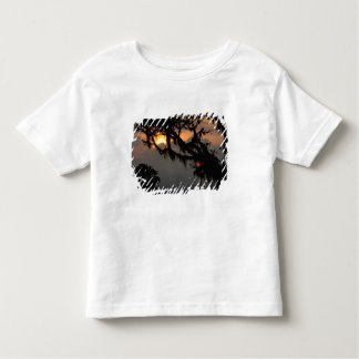 South America, Ecuador, cloud forest scene in Toddler T-Shirt