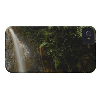 South America, Ecuador, eastern slope of the iPhone 4 Case
