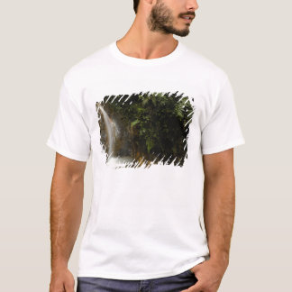South America, Ecuador, eastern slope of the T-Shirt