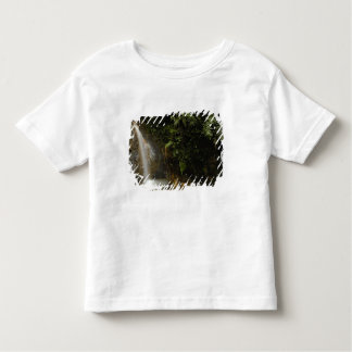 South America, Ecuador, eastern slope of the Toddler T-Shirt