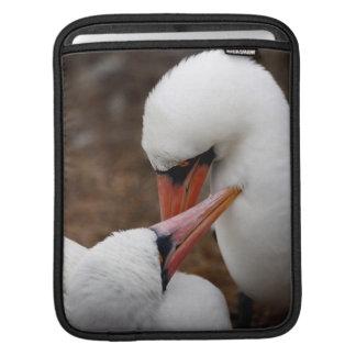 South America, Ecuador, Galapagos Islands. Nazca iPad Sleeve