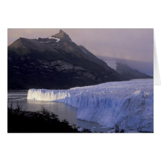 South America, Patagonia, Argentina Parque Card