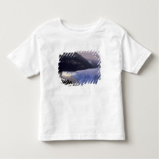 South America, Patagonia, Argentina Parque Toddler T-Shirt
