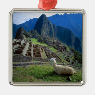 South America, Peru. A llama rests on a hill Christmas Ornament