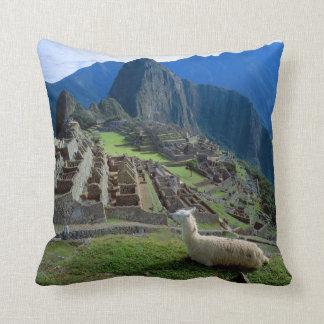 South America, Peru. A llama rests on a hill Cushion