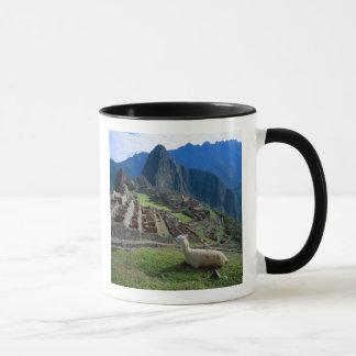 South America, Peru. A llama rests on a hill Mug