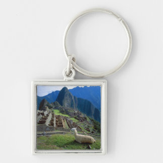 South America, Peru. A llama rests on a hill Silver-Colored Square Key Ring