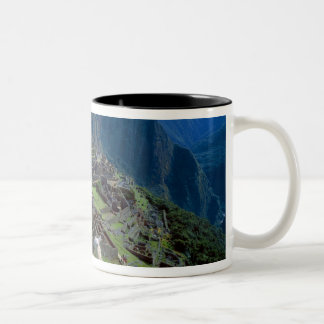 South America, Peru. A llama rests on a hill Two-Tone Coffee Mug