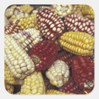 South America, Peru Corn, Maize Square Sticker