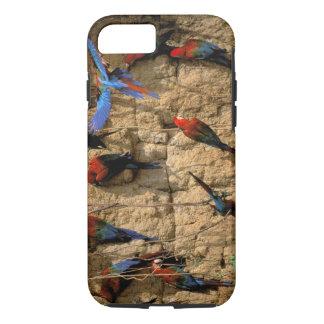 South America, Peru, Manu National Park, iPhone 7 Case