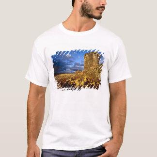 South America, Peru, near Lake Titicaca. T-Shirt