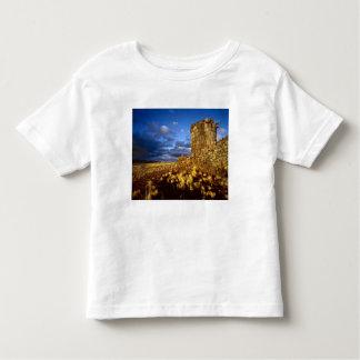 South America, Peru, near Lake Titicaca. Toddler T-Shirt