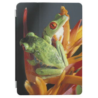 South America. Red-eyed tree frog Agalycmis iPad Air Cover