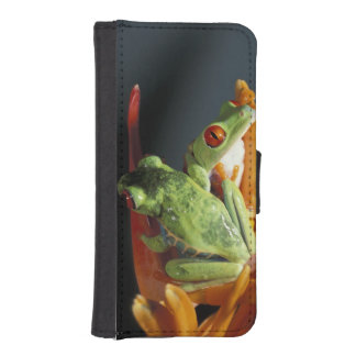 South America. Red-eyed tree frog Agalycmis iPhone SE/5/5s Wallet Case