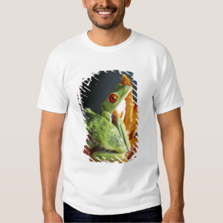 South America. Red-eyed tree frog Agalycmis T Shirts